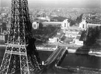 """Roger Henrard ou """"l'oiseau familier"""" de Paris"""