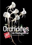 Le saviez-vous? Quiz sur les orchidées de Madagascar!