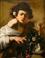 Caravage, Garçon mordu par un lézard, 1594. Huile sur toile © Firenze, Fondazione di Studi di Storia dell'Arte Roberto Longhi