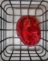 Cellules [Cells,] 2012-2013 © Courtesy of the artist and Galerie Chantal Crousel, Paris © Photo Sébastien Normand