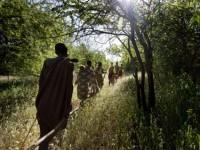 Hadza - Derniers des premiers hommes © Matthieu Paley
