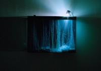 Hicham Berrada, Présage, 2013 Courtesy galerie Kamel Mennour