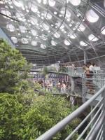 Académie des Sciences de Californie, San Francisco, 2000- 2008, RPBW Ph : Tim Griffith © RPBW – Renzo Piano Building Workshop Architects
