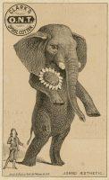 Cartes publicitaires se moquant du mouvement esthétique, 1882. Collection Merlin Holland