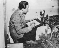 Walt Disney dessinant un faon pour Bambi, 1942 © Disney