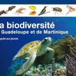 Biodiversité des Antilles